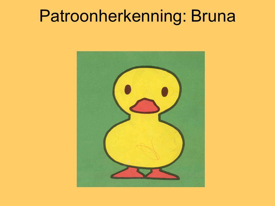 Patroonherkenning: Bruna