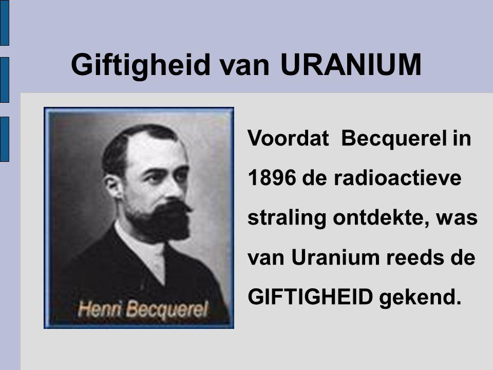 Giftigheid van URANIUM Voordat Becquerel in 1896 de radioactieve straling ontdekte, was van Uranium reeds de GIFTIGHEID gekend.