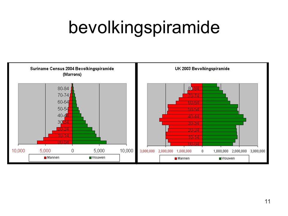 11 bevolkingspiramide