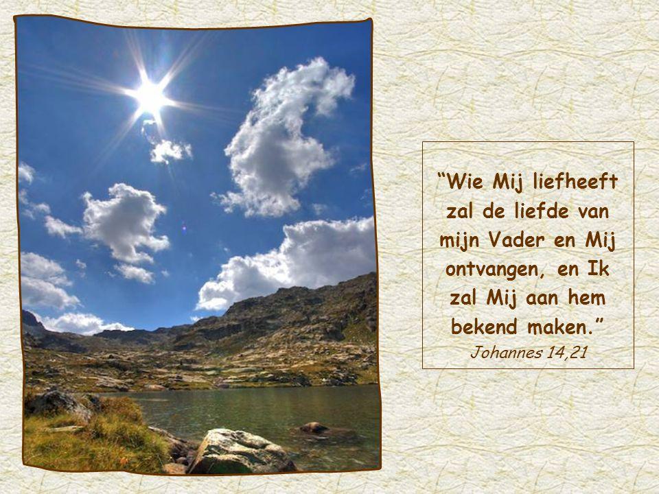 Door die liefde voor de ander breekt het licht van Jezus in ons door, zoals Hij beloofd heeft: Aan wie Mij liefheeft, zal Ik Mij bekend maken .