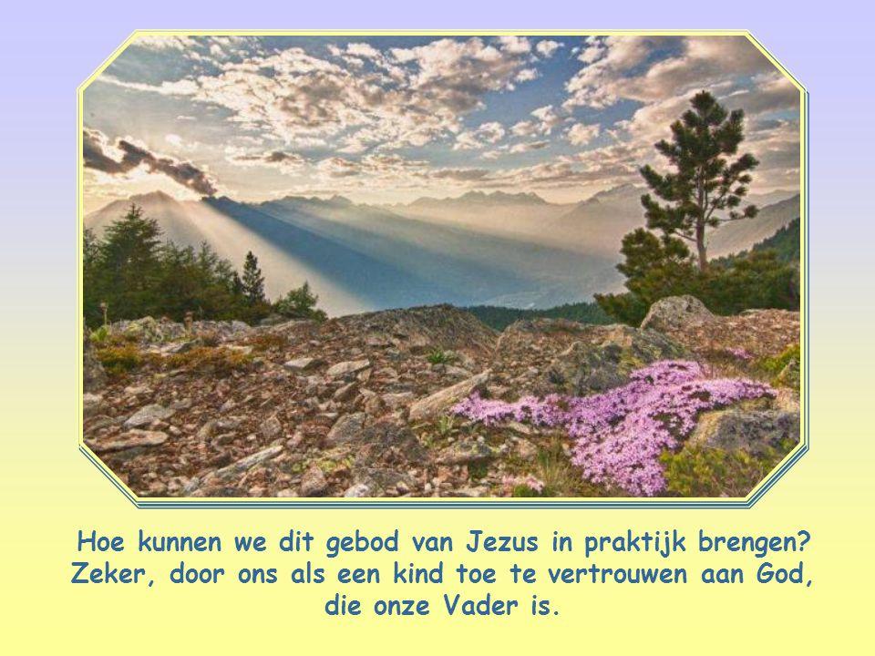 Heb de Heer, uw God, lief met heel uw hart en met heel uw ziel en met heel uw verstand. Matteüs 22,37