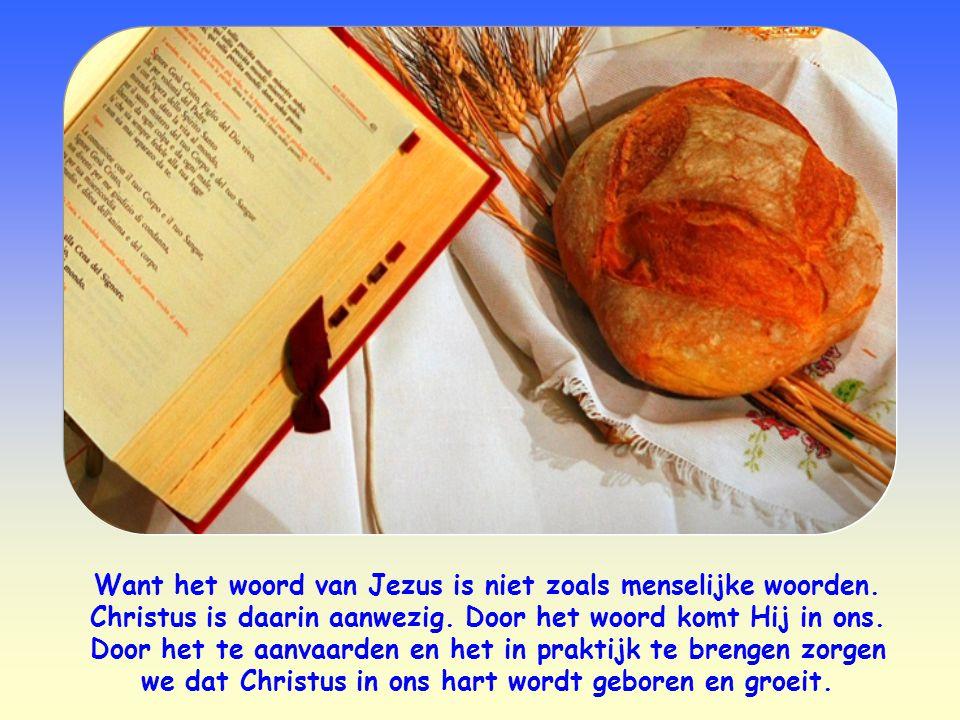 Volgens Jezus is er een middel om rein te zijn: dat is zijn woord.