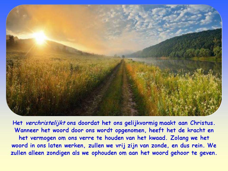 Het woord van Jezus wordt ook wel vergeleken met een zaadje dat in het binnenste van de gelovige wordt uitgezaaid. Als het opgenomen wordt, dringt het