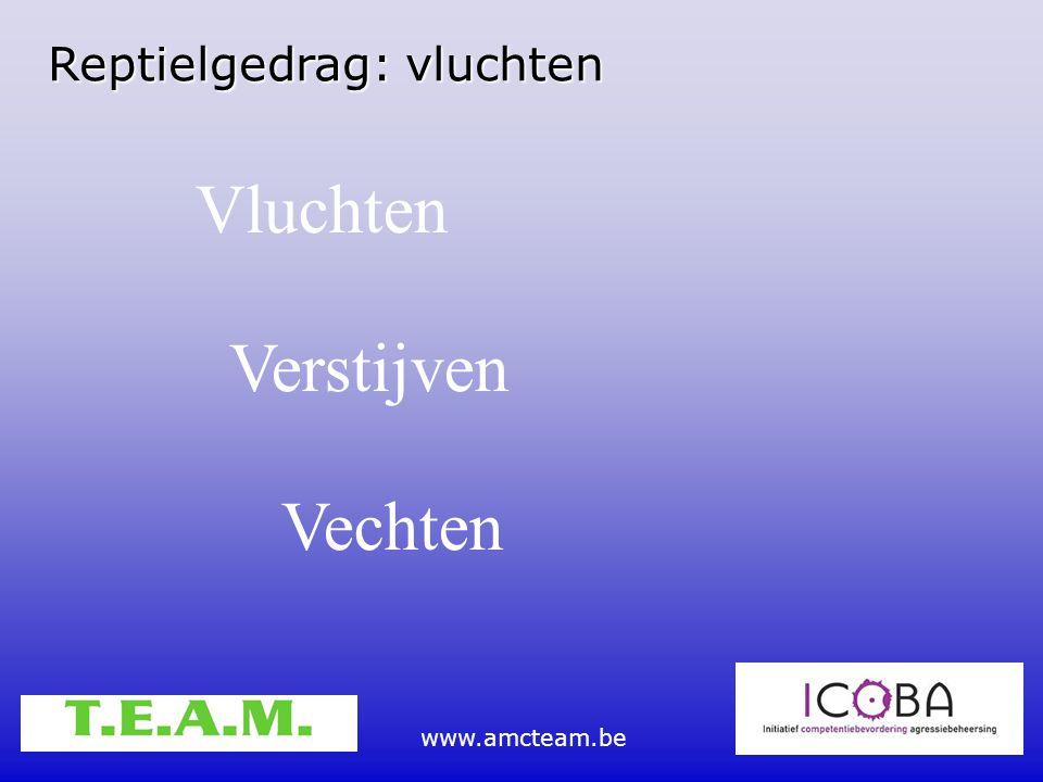 www.amcteam.be Reptielgedrag: vluchten Vluchten Verstijven Vechten