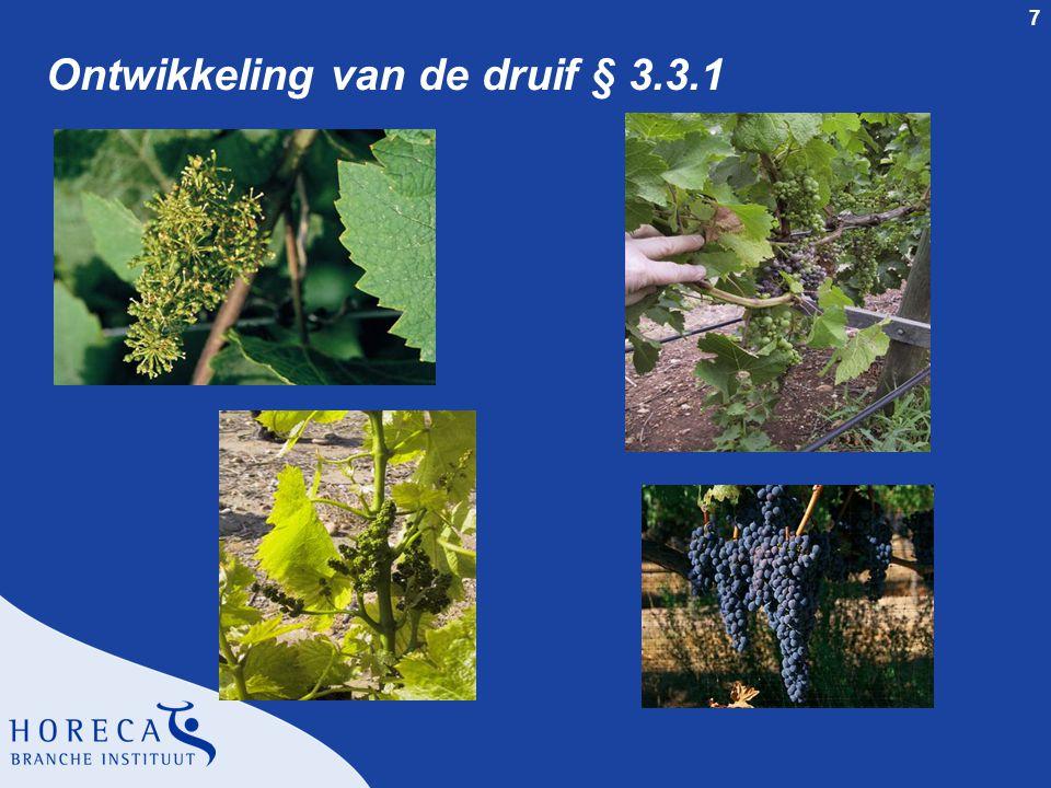 7 Ontwikkeling van de druif § 3.3.1