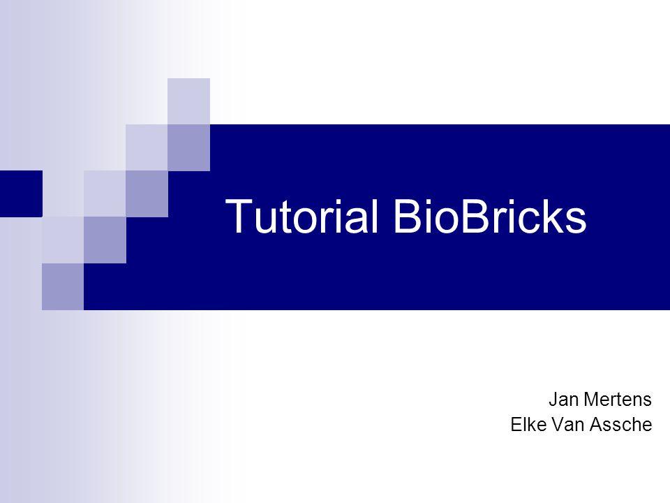 Tutorial BioBricks Jan Mertens Elke Van Assche