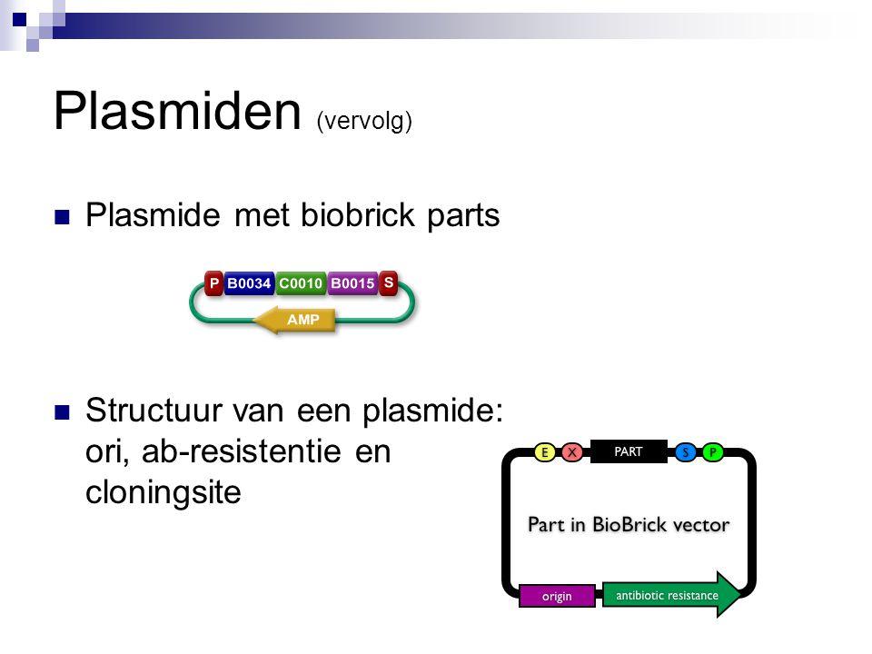 Plasmiden (vervolg) Plasmide met biobrick parts Structuur van een plasmide: ori, ab-resistentie en cloningsite