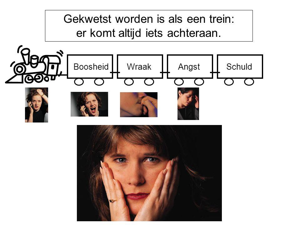 Gekwetst worden is als een trein: er komt altijd iets achteraan. BoosheidWraakAngstSchuld