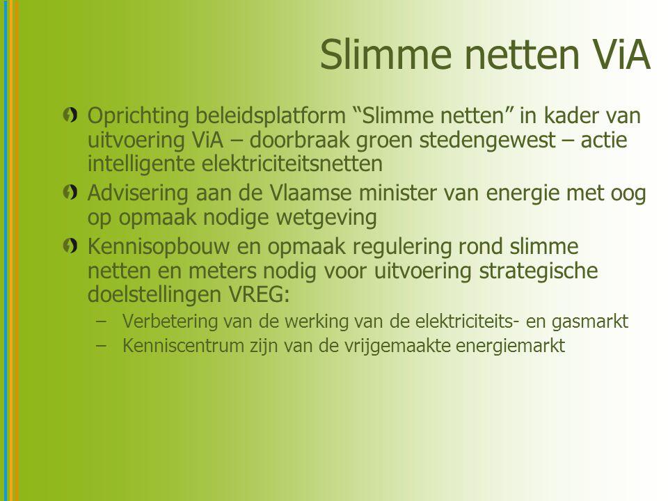 Slimme netten ViA Oprichting beleidsplatform Slimme netten in kader van uitvoering ViA – doorbraak groen stedengewest – actie intelligente elektriciteitsnetten Advisering aan de Vlaamse minister van energie met oog op opmaak nodige wetgeving Kennisopbouw en opmaak regulering rond slimme netten en meters nodig voor uitvoering strategische doelstellingen VREG: – Verbetering van de werking van de elektriciteits- en gasmarkt – Kenniscentrum zijn van de vrijgemaakte energiemarkt