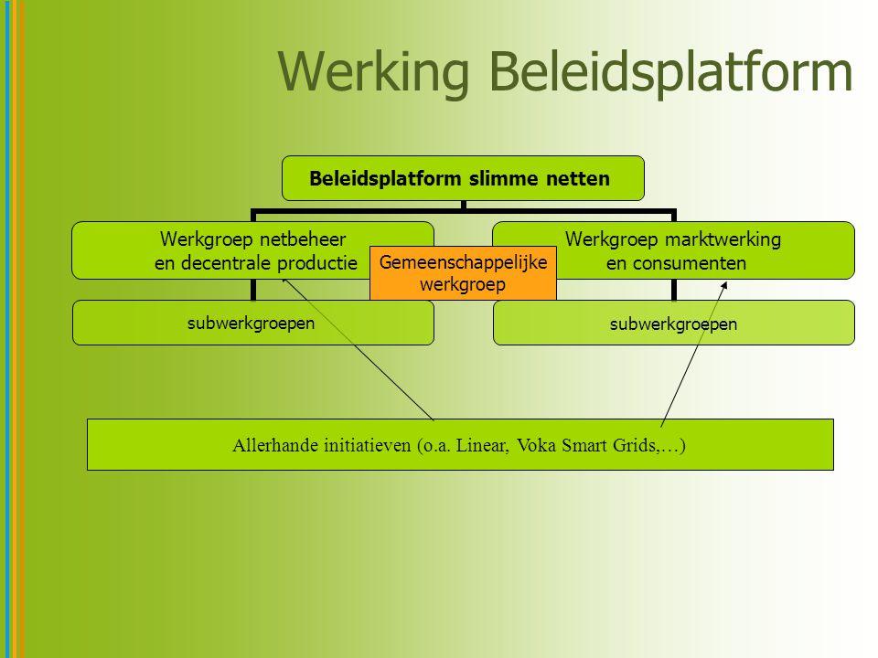 Werking Beleidsplatform Allerhande initiatieven (o.a. Linear, Voka Smart Grids,…) Beleidsplatform slimme netten Werkgroep netbeheer en decentrale prod