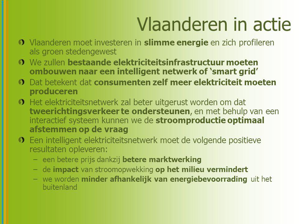Vlaanderen in actie Vlaanderen moet investeren in slimme energie en zich profileren als groen stedengewest We zullen bestaande elektriciteitsinfrastructuur moeten ombouwen naar een intelligent netwerk of 'smart grid' Dat betekent dat consumenten zelf meer elektriciteit moeten produceren Het elektriciteitsnetwerk zal beter uitgerust worden om dat tweerichtingsverkeer te ondersteunen, en met behulp van een interactief systeem kunnen we de stroomproductie optimaal afstemmen op de vraag Een intelligent elektriciteitsnetwerk moet de volgende positieve resultaten opleveren: –een betere prijs dankzij betere marktwerking –de impact van stroomopwekking op het milieu vermindert –we worden minder afhankelijk van energiebevoorrading uit het buitenland