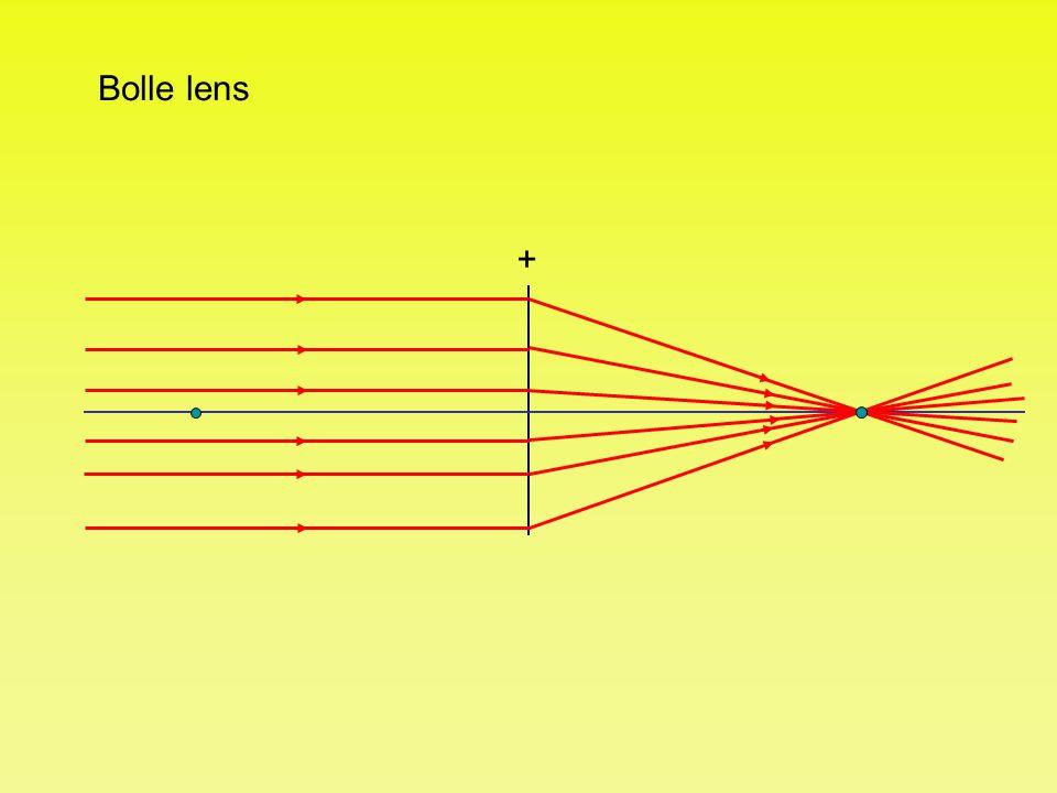 + Bolle lens