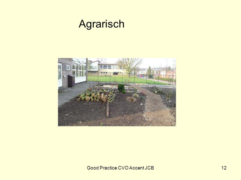 Agrarisch 12Good Practice CVO Accent JCB