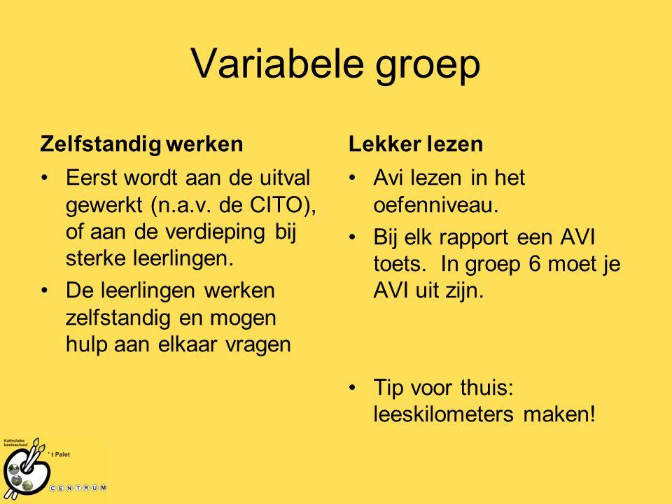 Variabele groep Zelfstandig werken Eerst wordt aan de uitval gewerkt (n.a.v.