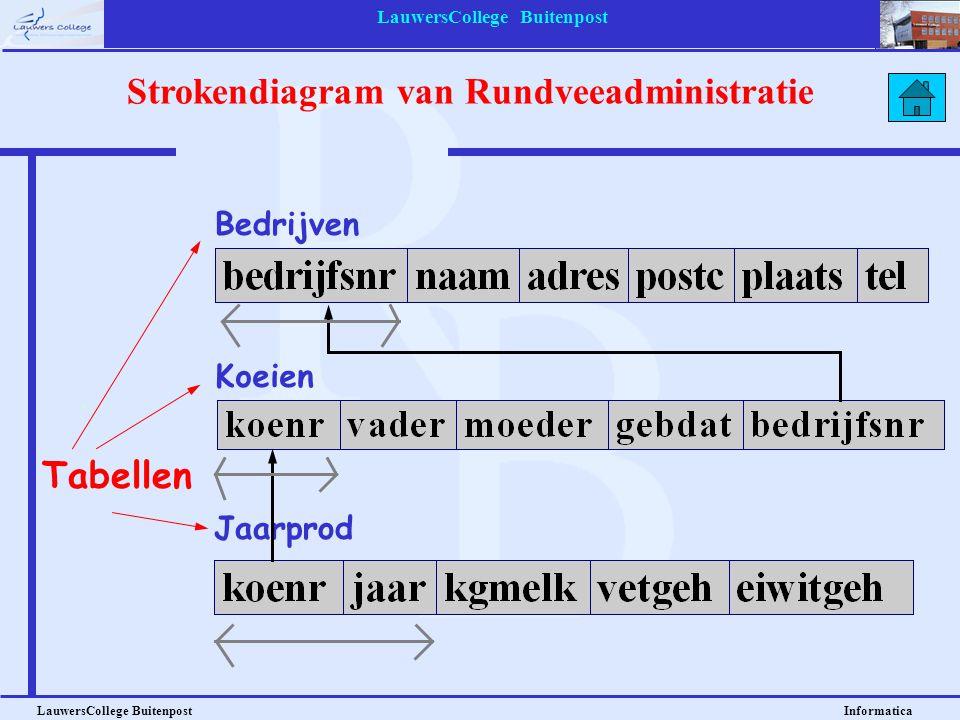 LauwersCollege Buitenpost LauwersCollege Buitenpost Informatica Bedrijven Strokendiagram van Rundveeadministratie Koeien Jaarprod Tabellen