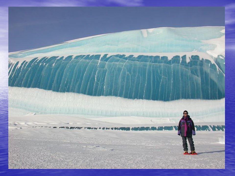 Antarctica Bevroren Golfdeel - De Natuur is echt verbazingwekkend.