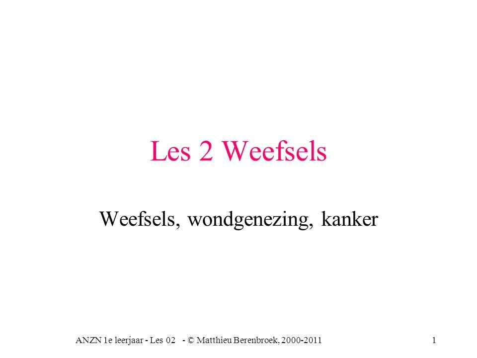 ANZN 1e leerjaar - Les 02 - © Matthieu Berenbroek, 2000-201112 Bindweefsels Vooral de tussenstof is van belang Bindweefselcellen omgeven door tussencelstof, specifieke vezels collageen = onvertakte niet rekbare, trekvaste vezels, b.v.