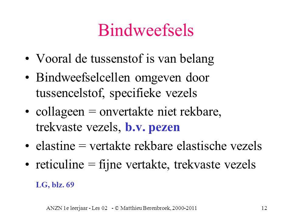 ANZN 1e leerjaar - Les 02 - © Matthieu Berenbroek, 2000-201112 Bindweefsels Vooral de tussenstof is van belang Bindweefselcellen omgeven door tussence