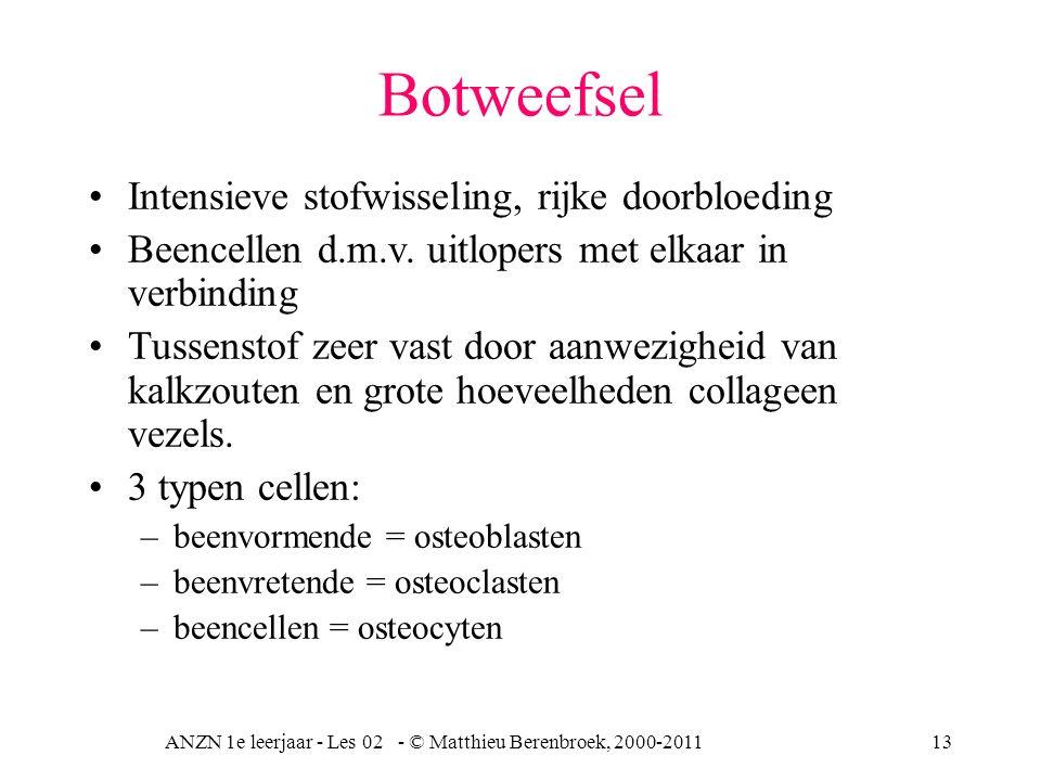 ANZN 1e leerjaar - Les 02 - © Matthieu Berenbroek, 2000-201113 Botweefsel Intensieve stofwisseling, rijke doorbloeding Beencellen d.m.v. uitlopers met