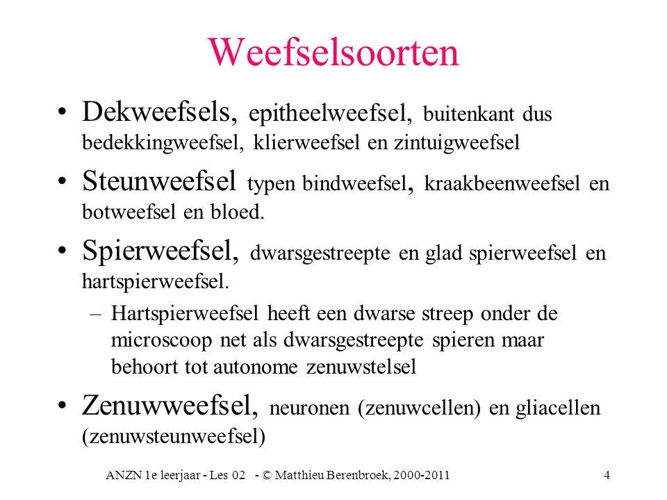 ANZN 1e leerjaar - Les 02 - © Matthieu Berenbroek, 2000-20114 Weefselsoorten Dekweefsels, epitheelweefsel, buitenkant dus bedekkingweefsel, klierweefs