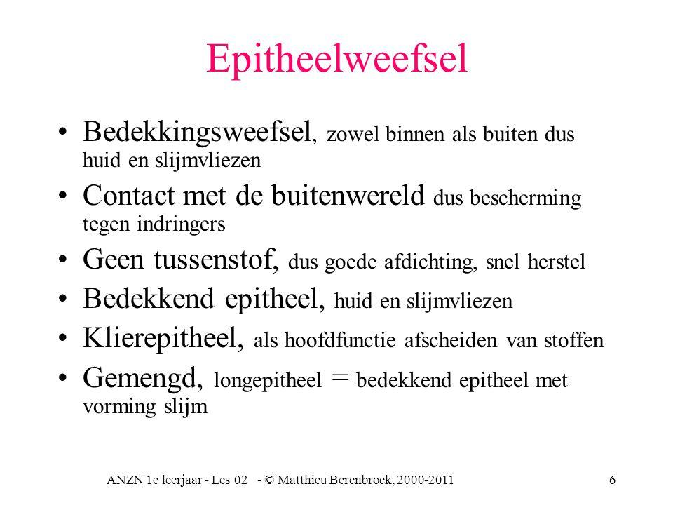 ANZN 1e leerjaar - Les 02 - © Matthieu Berenbroek, 2000-20116 Epitheelweefsel Bedekkingsweefsel, zowel binnen als buiten dus huid en slijmvliezen Cont