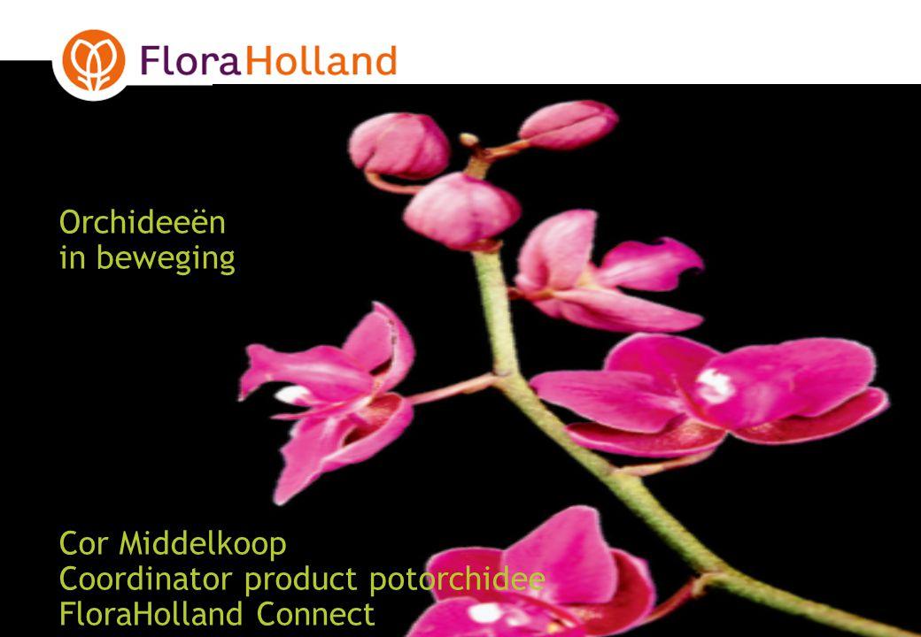 220-7-2014 Orchidee assortiment 2007 FloraHolland totaal ProductOmzetGroeiAandeelAantalGroeiAandeel Orchidee totaal308.48421%100%64.77126%100% Phalaenopsis218.68327%71%44.86833%69% Overige orchidee42.8049%15%10.65411%17% Cymbidium15.248-2%5%2.056-2%3% Dendrobium8.56813%3%2.63027%4% Dendrobium Nobile3.1627%1%64810%1% Miltonia6.70731%2%1.43426%2% Oncidium4.495-5%2%1.190-4%2% Paphiopedilum3.6829%1%8532%1% Cambria1.6141%< 1%43830%< 1% Bron; FloraHolland