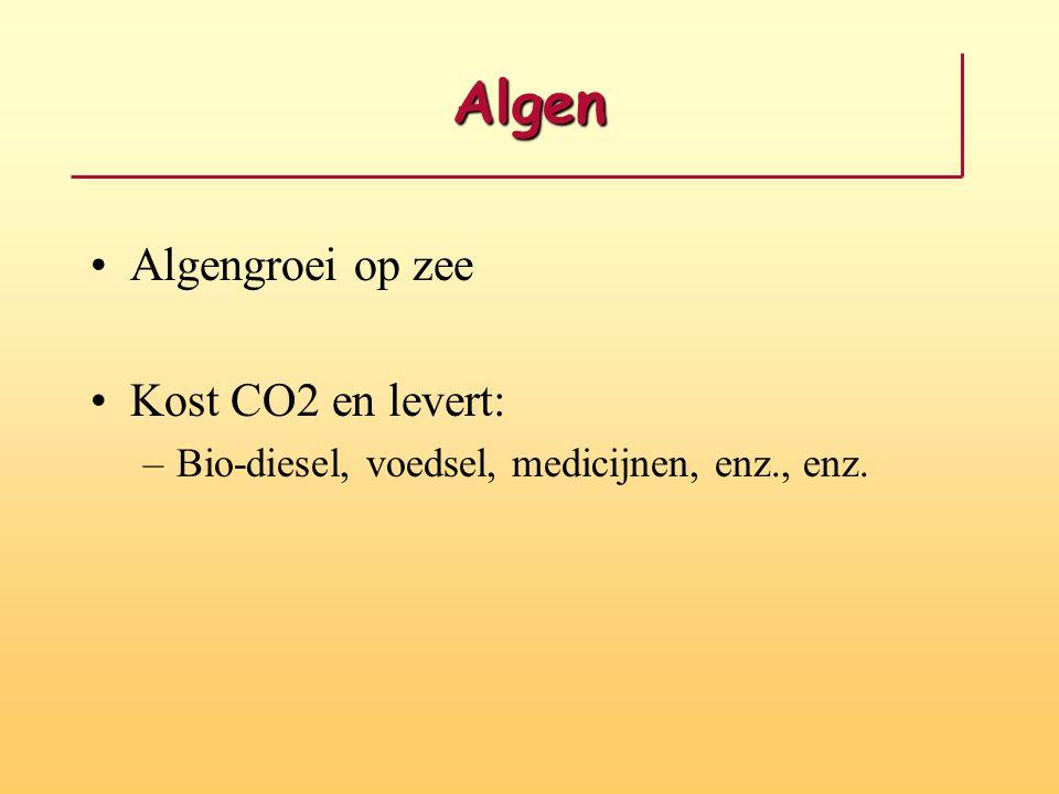 Algen Algengroei op zee Kost CO2 en levert: –Bio-diesel, voedsel, medicijnen, enz., enz.