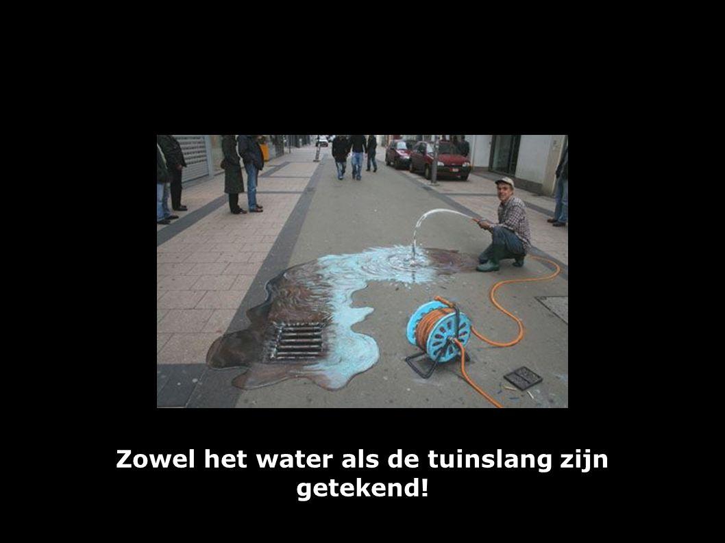 Zowel het water als de tuinslang zijn getekend!