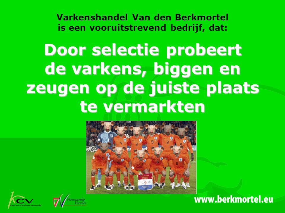 Varkenshandel Van den Berkmortel is een vooruitstrevend bedrijf, dat: Door selectie probeert de varkens, biggen en zeugen op de juiste plaats te vermarkten