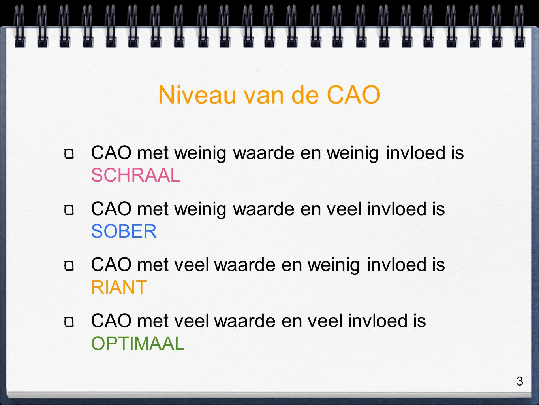 3 Niveau van de CAO CAO met weinig waarde en weinig invloed is SCHRAAL CAO met weinig waarde en veel invloed is SOBER CAO met veel waarde en weinig invloed is RIANT CAO met veel waarde en veel invloed is OPTIMAAL