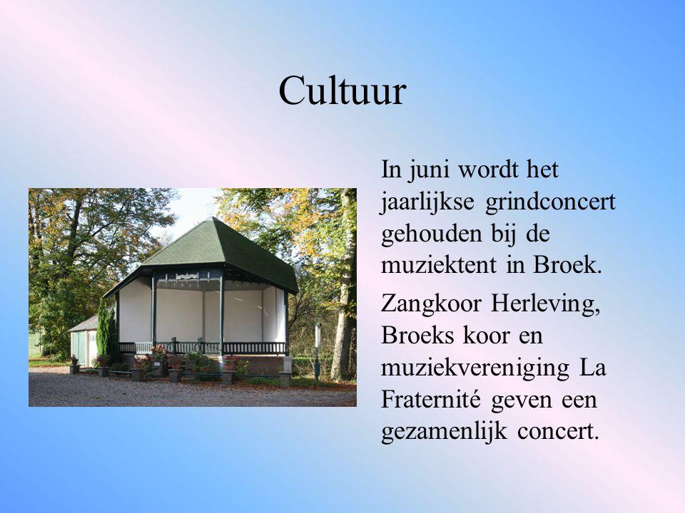Cultuur In juni wordt het jaarlijkse grindconcert gehouden bij de muziektent in Broek.