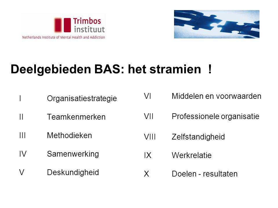 Deelgebieden BAS: het stramien .