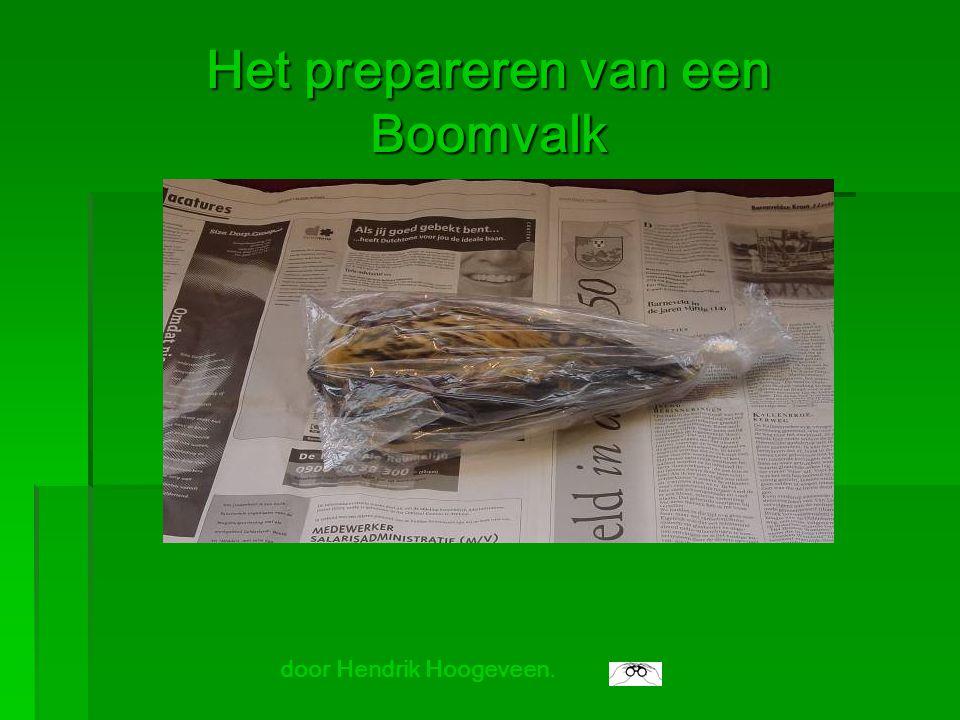 Het prepareren van een Boomvalk door Hendrik Hoogeveen.