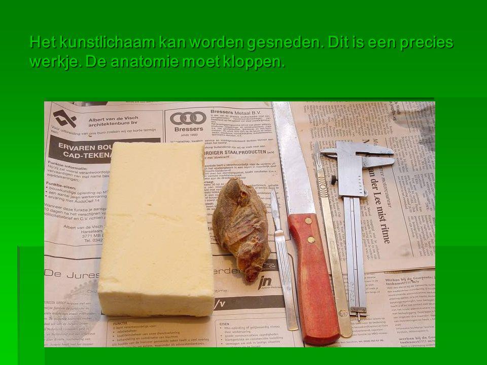 Het kunstlichaam kan worden gesneden. Dit is een precies werkje. De anatomie moet kloppen.