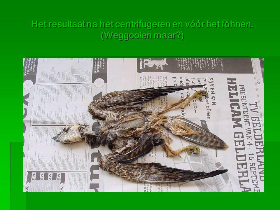 Het resultaat na het centrifugeren en vóór het föhnen. (Weggooien maar?)