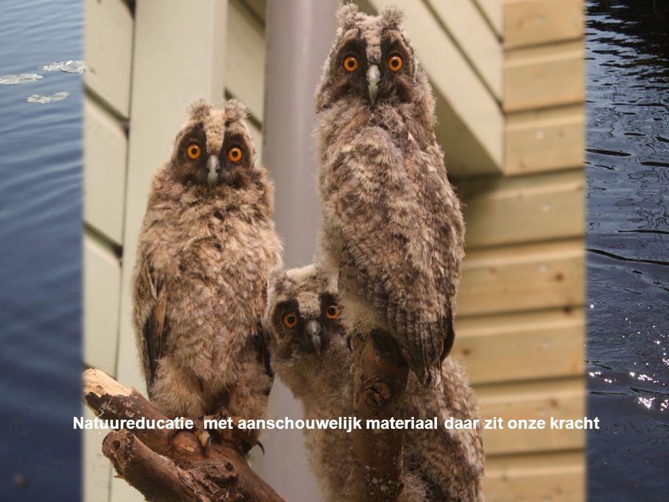 Elk schooljaar bezoeken vele scholen Vogel- en Zoogdieropvang De Fûgelhelling in Ureterp.