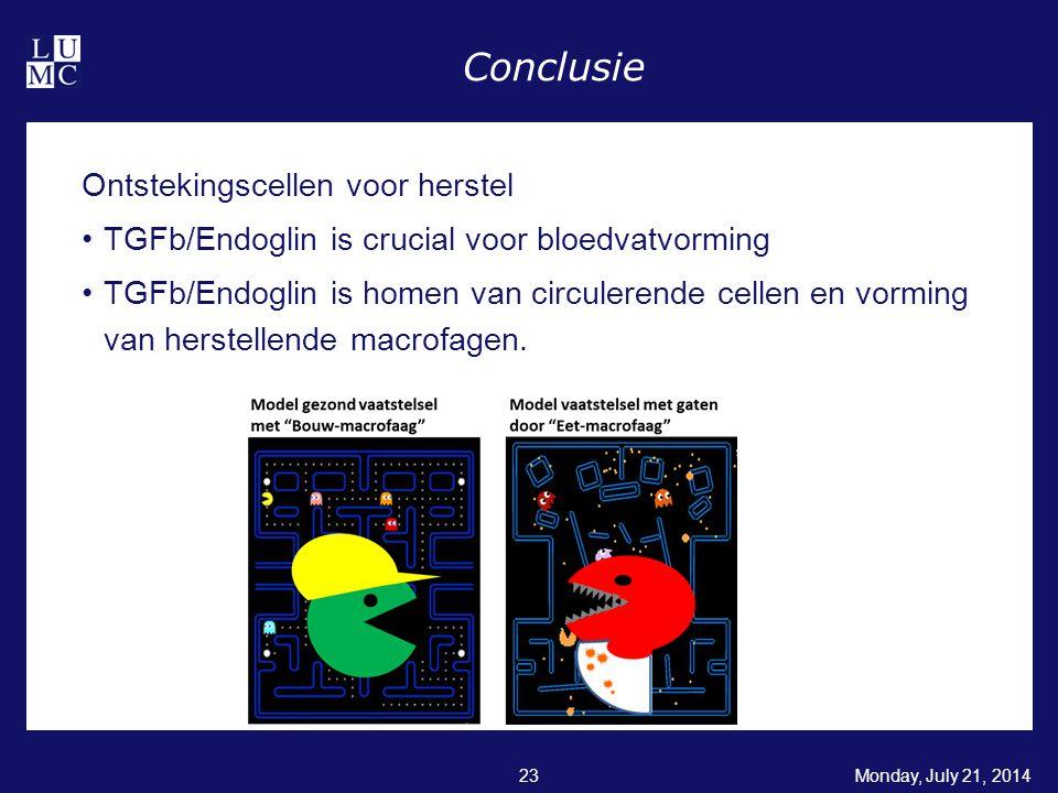Monday, July 21, 201423 Conclusie Ontstekingscellen voor herstel TGFb/Endoglin is crucial voor bloedvatvorming TGFb/Endoglin is homen van circulerende cellen en vorming van herstellende macrofagen.