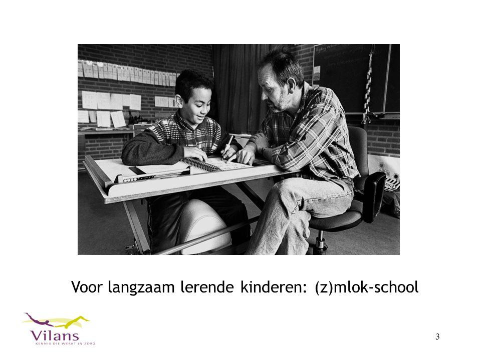 4 Veel individueel les, speciaal voor dit kind op (z)mlok- school