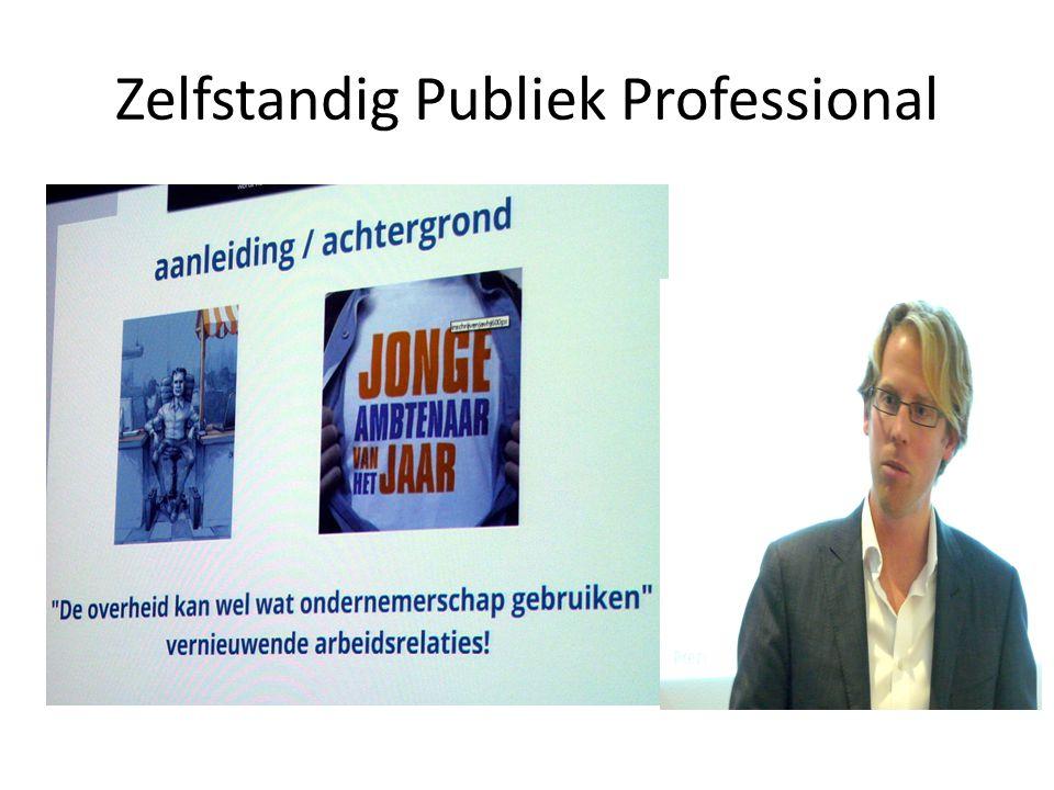 Zelfstandig Publiek Professional