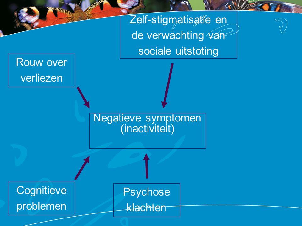 Negatieve symptomen (inactiviteit) Cognitieve problemen Rouw over verliezen Zelf-stigmatisatie en de verwachting van sociale uitstoting Psychose klach