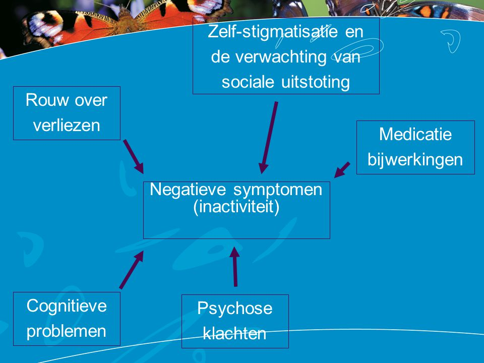 Negatieve symptomen (inactiviteit) Cognitieve problemen Rouw over verliezen Zelf-stigmatisatie en de verwachting van sociale uitstoting Medicatie bijw