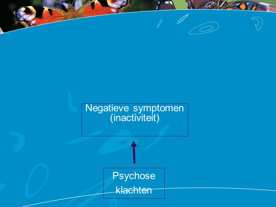 Oorzaak 2: cognitieve problemen Geheugen Aandacht, concentratie Snelheid van informatie verwerken Flexibiliteit (kunnen switchen) Planning, organisatie Is tijdelijk sterk verstoord tijdens psychose Maar blijft (vaak) ook daarna beperkt Wordt niet erger bij iedere psychose