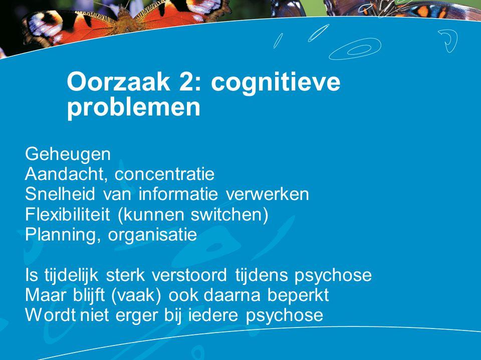 Oorzaak 2: cognitieve problemen Geheugen Aandacht, concentratie Snelheid van informatie verwerken Flexibiliteit (kunnen switchen) Planning, organisati
