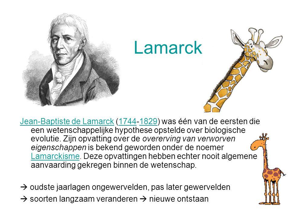 Lamarck Jean-Baptiste de LamarckJean-Baptiste de Lamarck (1744-1829) was één van de eersten die een wetenschappelijke hypothese opstelde over biologische evolutie.