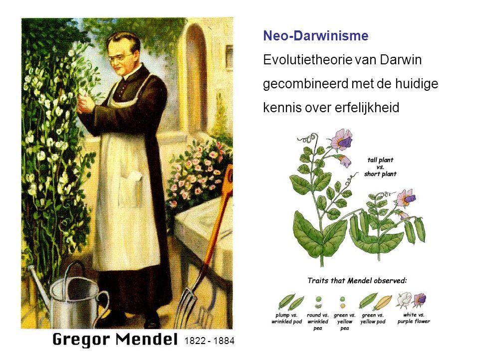 Evolutie door natuurlijke selectie Darwin concludeerde dat natuurlijke selectie kon verklaren hoe organismen langzaamaan veranderen en evolueerden in