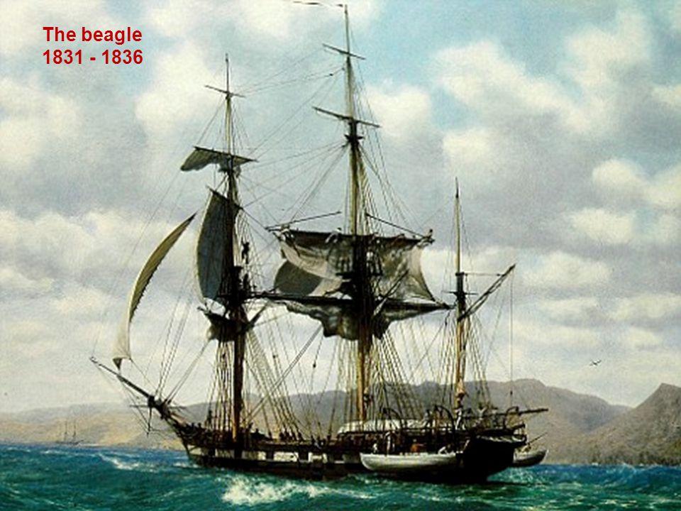 1859 The origin of species