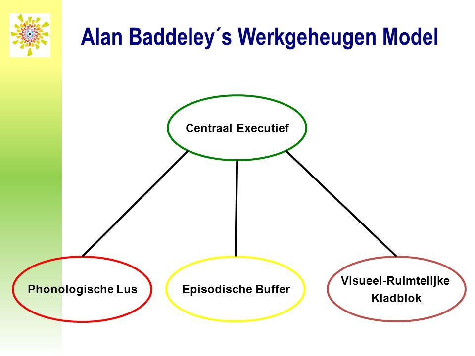 Alan Baddeley´s Werkgeheugen Model Visueel-Ruimtelijke Kladblok Phonologische Lus Centraal Executief Episodische Buffer
