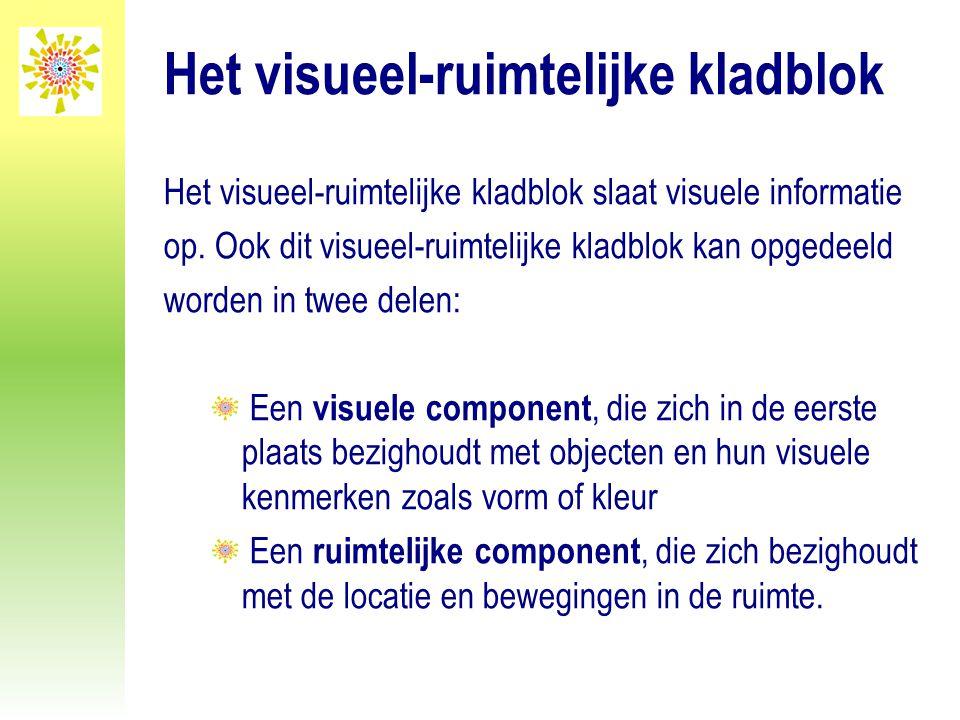 Het visueel-ruimtelijke kladblok Het visueel-ruimtelijke kladblok slaat visuele informatie op. Ook dit visueel-ruimtelijke kladblok kan opgedeeld word