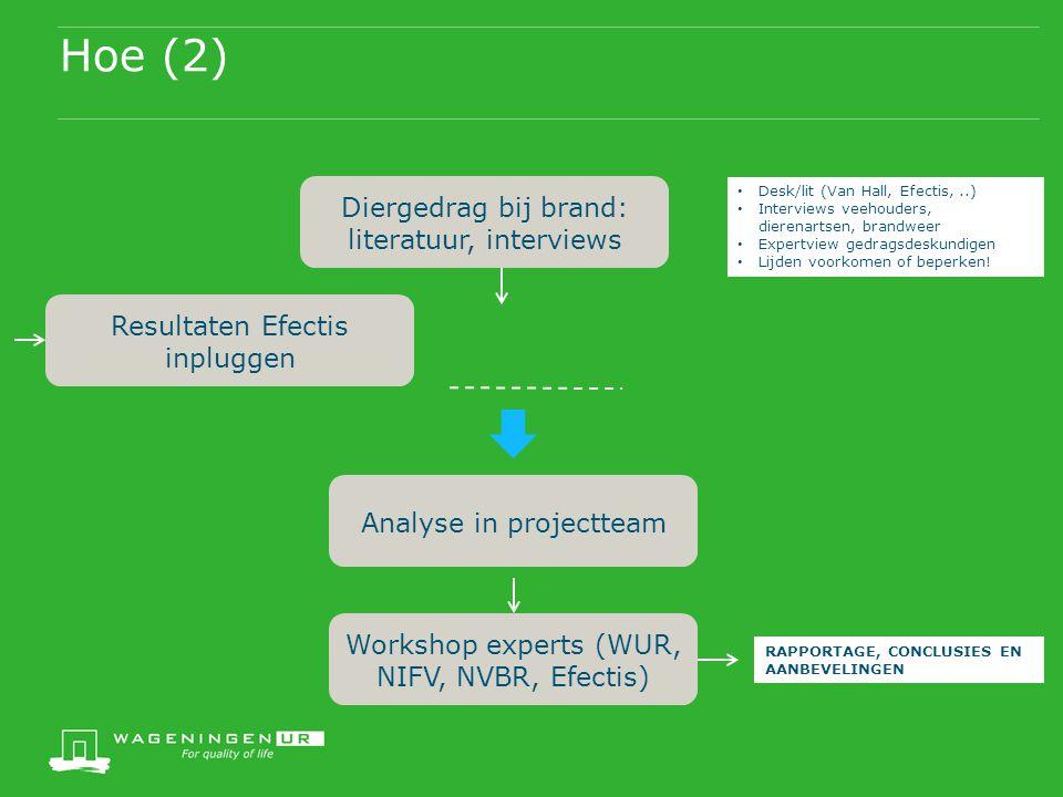 Hoe (2) Diergedrag bij brand: literatuur, interviews Resultaten Efectis inpluggen Analyse in projectteam Workshop experts (WUR, NIFV, NVBR, Efectis) D