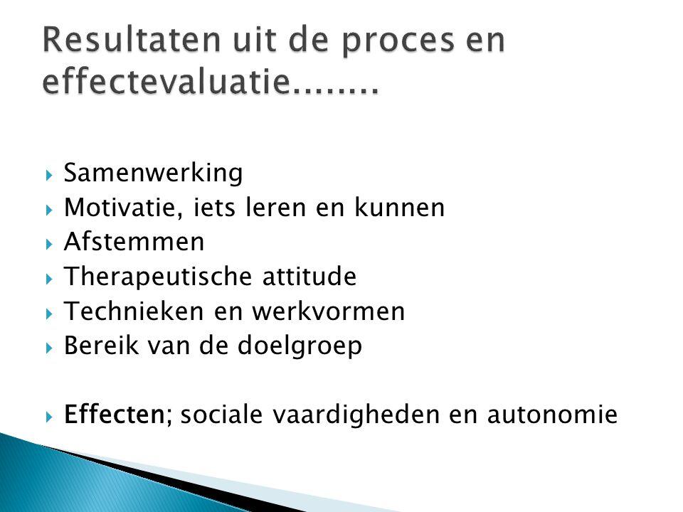  Samenwerking  Motivatie, iets leren en kunnen  Afstemmen  Therapeutische attitude  Technieken en werkvormen  Bereik van de doelgroep  Effecten; sociale vaardigheden en autonomie